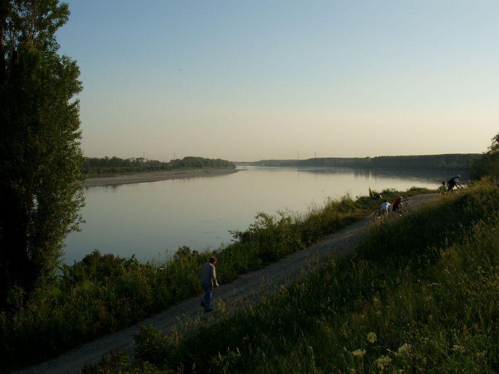 Ambiente fiume Po serale con uccelli e fondo autostrada