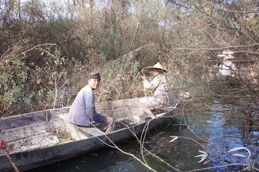Soundscape from Skadar with people who unload the wood from the boat