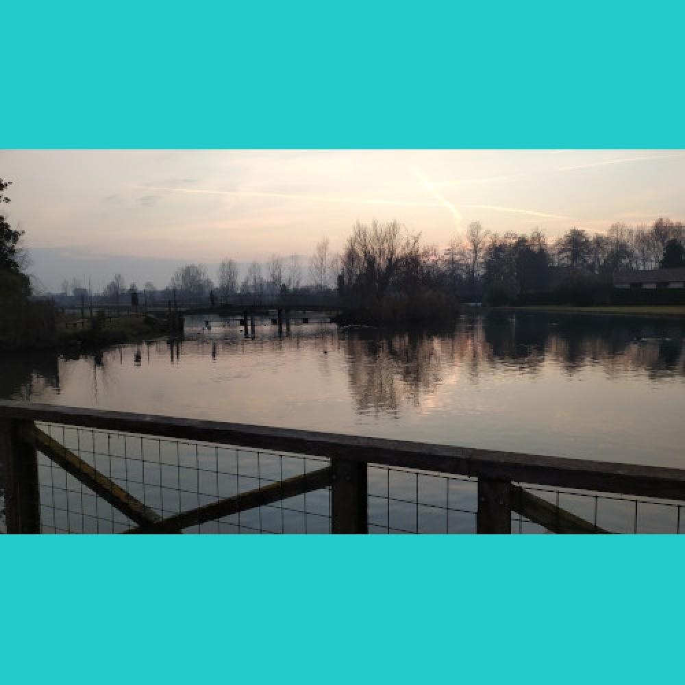 Quinto di Treviso, Mulino ad acqua