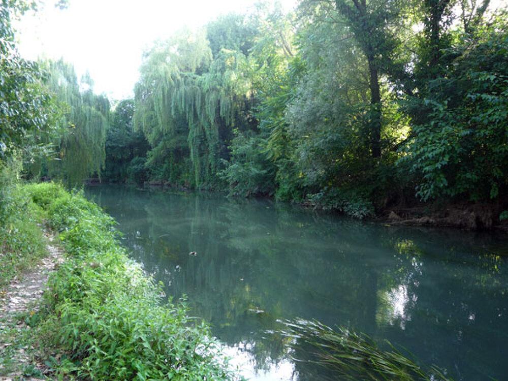 Paesaggio sonoro all\'alba, fiume Musestre