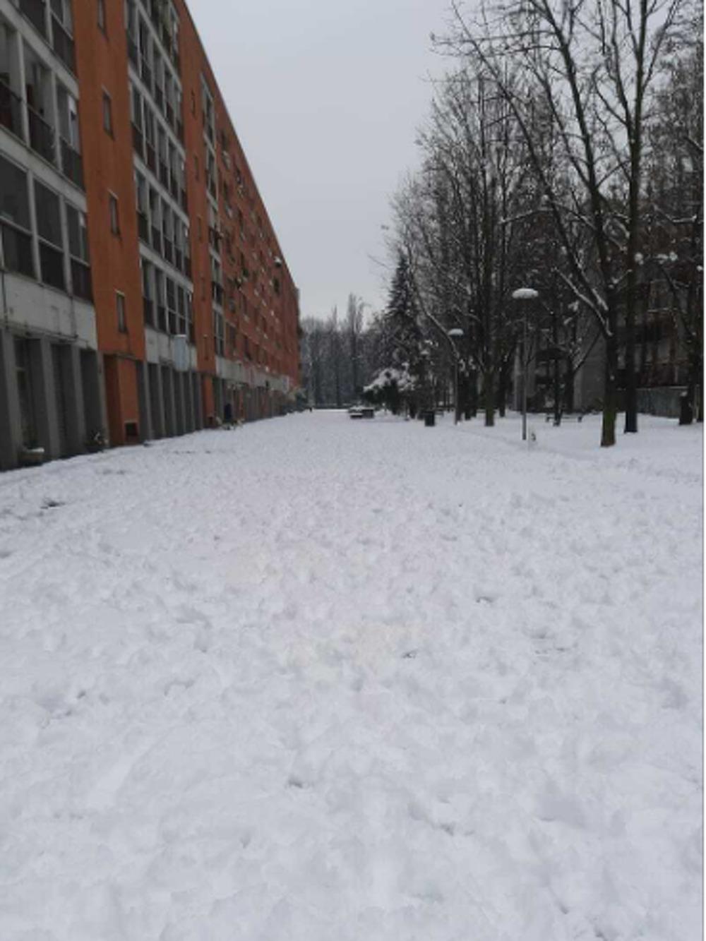 San Donato M.se nella neve