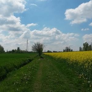 Primo pomeriggio in campagna
