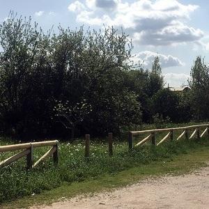In un parco