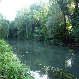 Paesaggio sonoro all'alba, fiume Musestre